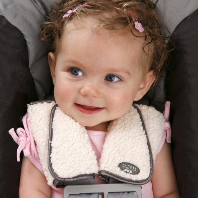Baby's Thermal Insulation Car Seat Cover