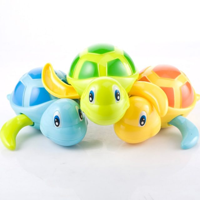 Kid's Small Water Turtle